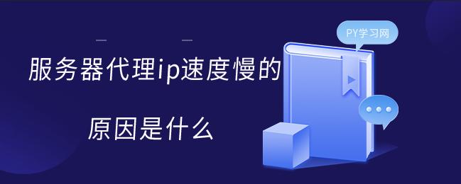 服务器代理ip速度慢的原因是什么